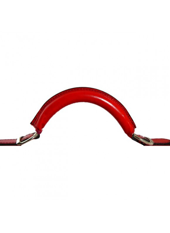 Pratesi Handle for replacement - Radica Cherry